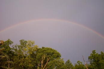 Rainbow Over Woods Behind House - June 2008 (photo by Michele Kearns)