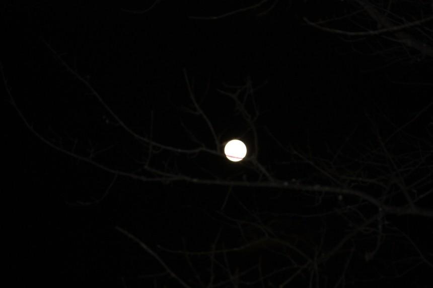 """""""Liquid Moon"""""""
