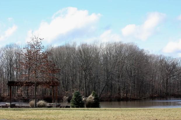 Brunswick Lake 12/2013