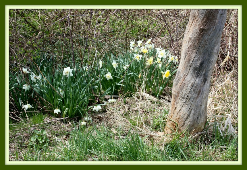 Easter Frame