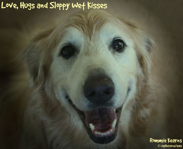 Love_Hugs_Sloppy_Wet_Kisses