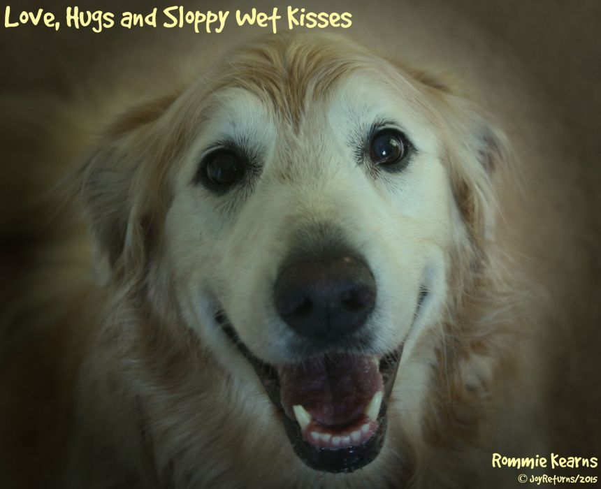 Love_Hugs_Sloppy_Wet_Kisses