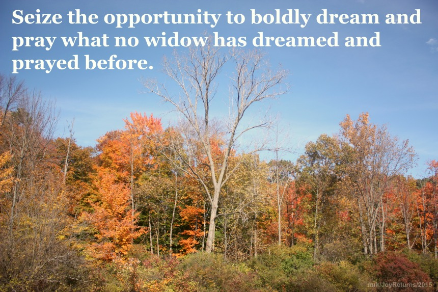 boldly dream