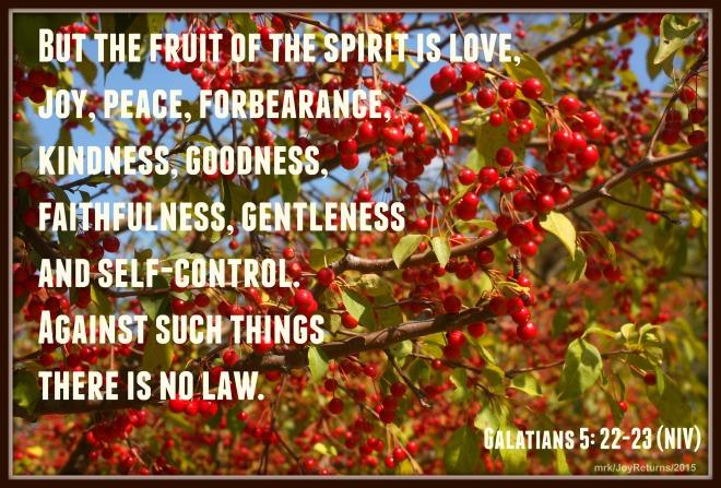 Fruit_Spirit