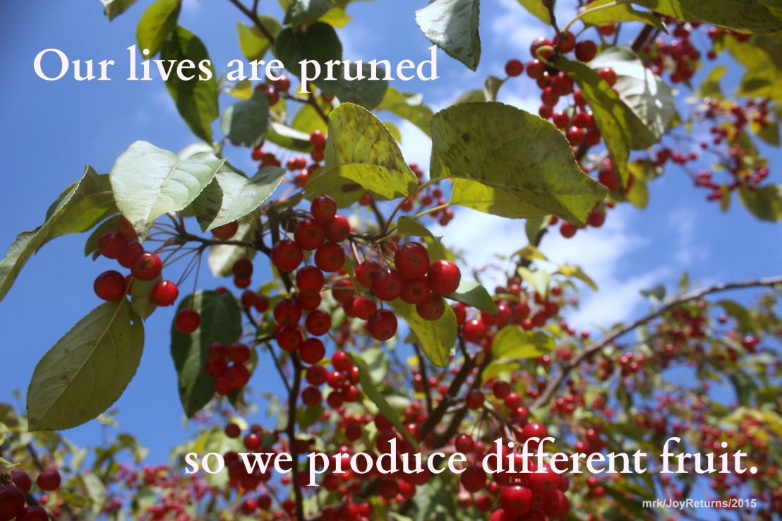 { Day 12 }  31 Tricks to Scare Away the Grief Monster –PRUNE