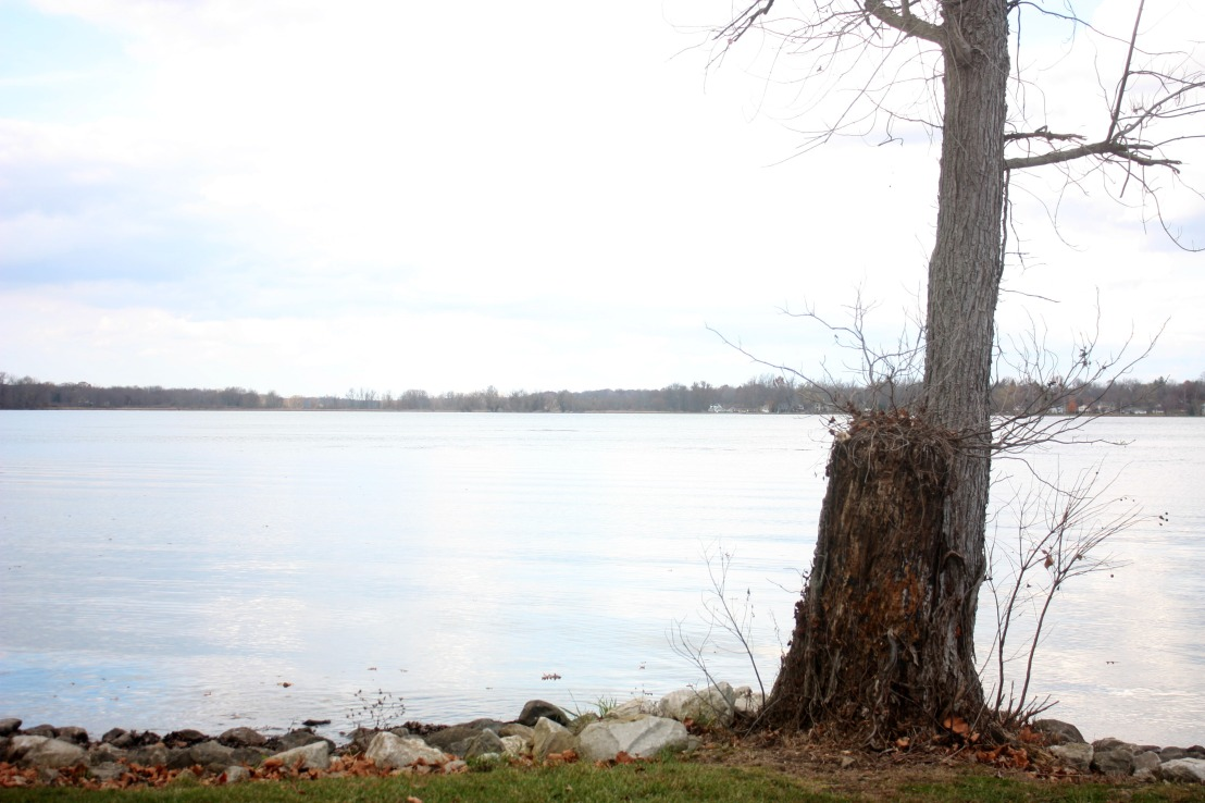 What To Do In Ohio During November – It Is Not What YouThink