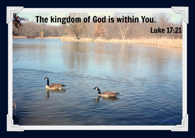 KingdomBlog