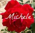 red-rose_signature